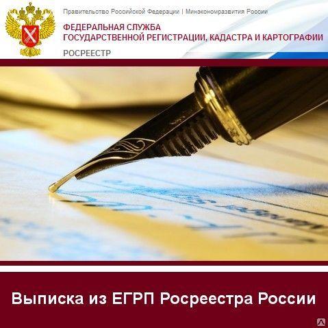 Выписка из ЕГРП РосРеестра России.